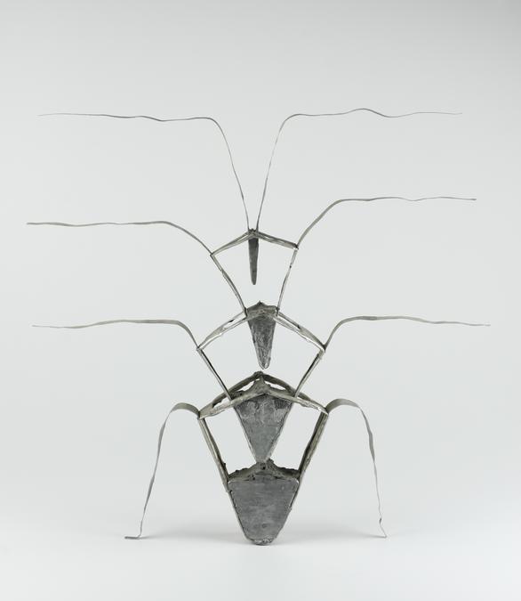 Rostlina / Plant